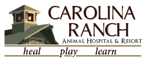 Cropped Carolina Ranch Logo Main 3